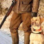 Faut-il souscrire une assurance pour votre chien de chasse ?